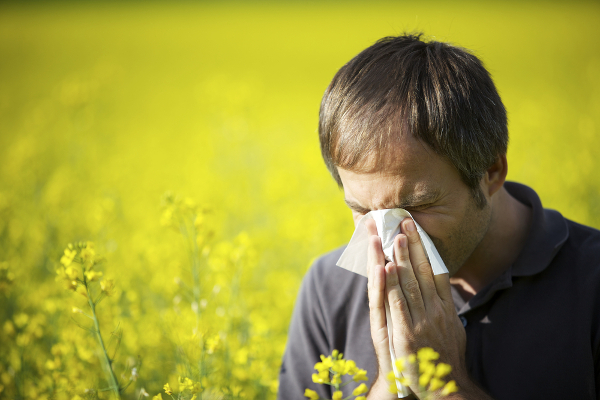 Hay-Fever-Symptoms-Causes-And-Treatment